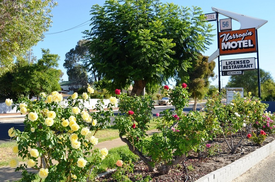 Narrogin Motel - Perisher Accommodation
