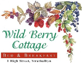 Wild Berry Cottage - Perisher Accommodation