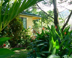 Daintree Valley Haven - Perisher Accommodation
