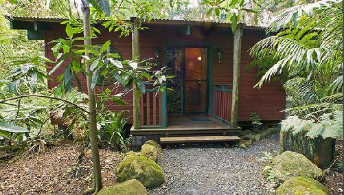 Springbrook Lyrebird Retreat - Perisher Accommodation