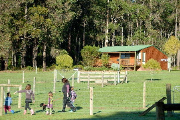 Diamond Forest Farm Stay - Perisher Accommodation