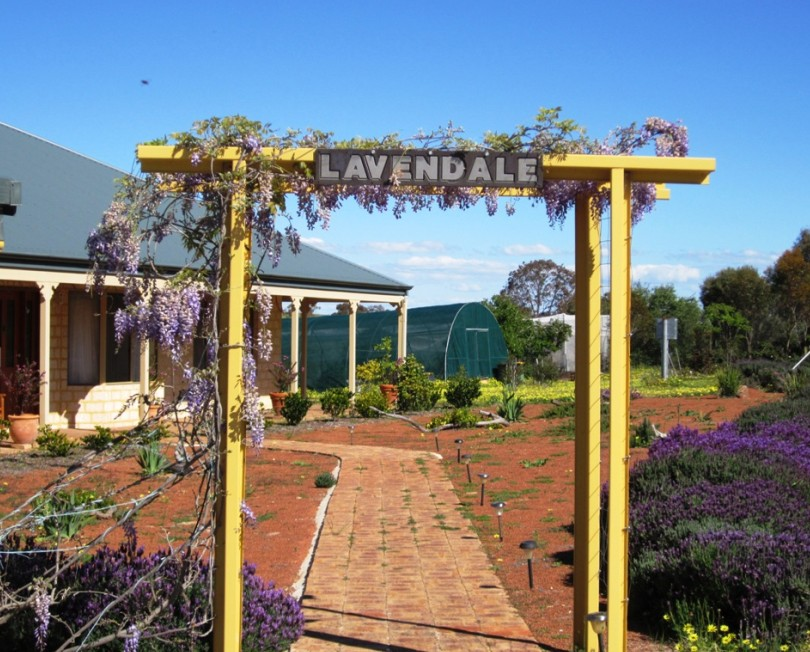 Lavendale Farmstay and Cottages - Perisher Accommodation