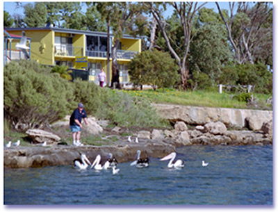 Almonta Holiday Apartments - Perisher Accommodation
