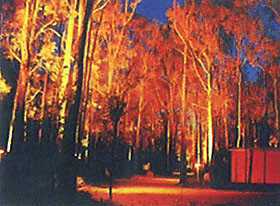 Dwellingup Chalet amp Caravan Park - Perisher Accommodation