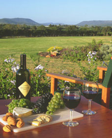 Tranquil Vale Vineyard Cottages - Perisher Accommodation