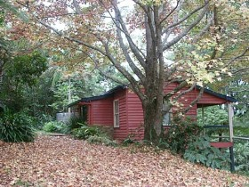 Turkeys Nest Rainforest Cottage - Perisher Accommodation