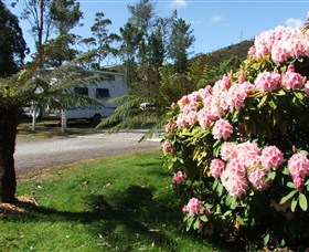 Zeehan Bush Camp  and Caravan Park - Perisher Accommodation