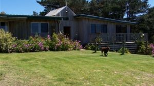 Clifton Beach Lodge - Perisher Accommodation