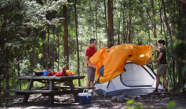 Bald Rock campground and picnic area - Perisher Accommodation