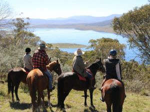 Reynella Homestead and Horseback Rides - Perisher Accommodation
