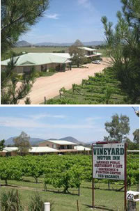Mudgee Vineyard Motor Inn - Perisher Accommodation
