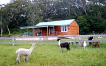 Moorallie Cottage Farm Stay - Perisher Accommodation