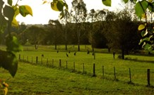 Stone Cottage Mittagong - Perisher Accommodation