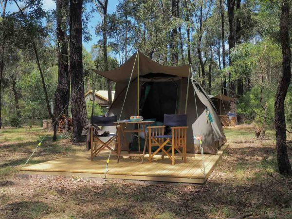 Tall Trees Camping on the Great Ocean Road - Perisher Accommodation