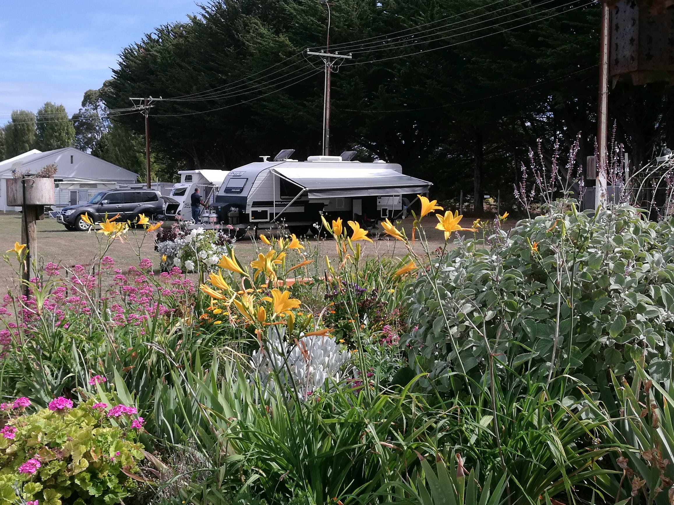 Millicent Showground RV Park - Perisher Accommodation