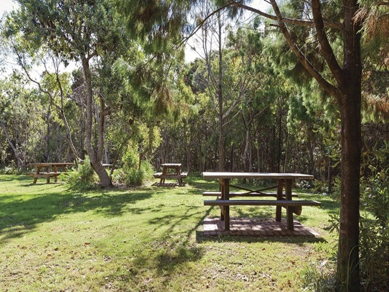 Illaroo group camping area - Perisher Accommodation