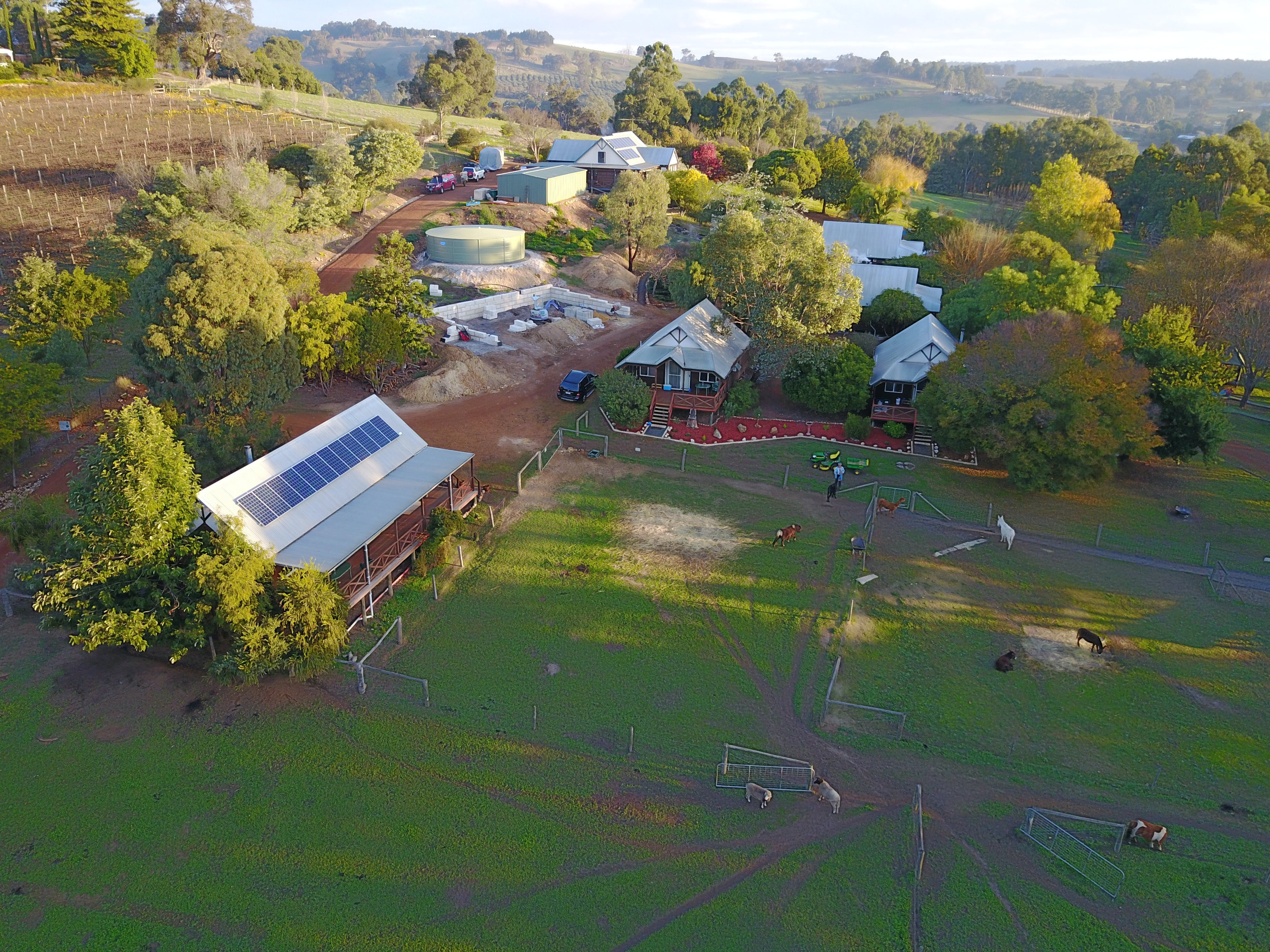 Sunnyhurst Chalets Farmstay - Perisher Accommodation