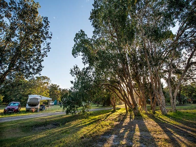 Delicate campground - Perisher Accommodation