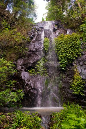 Nimbin Waterfall Retreat - Perisher Accommodation