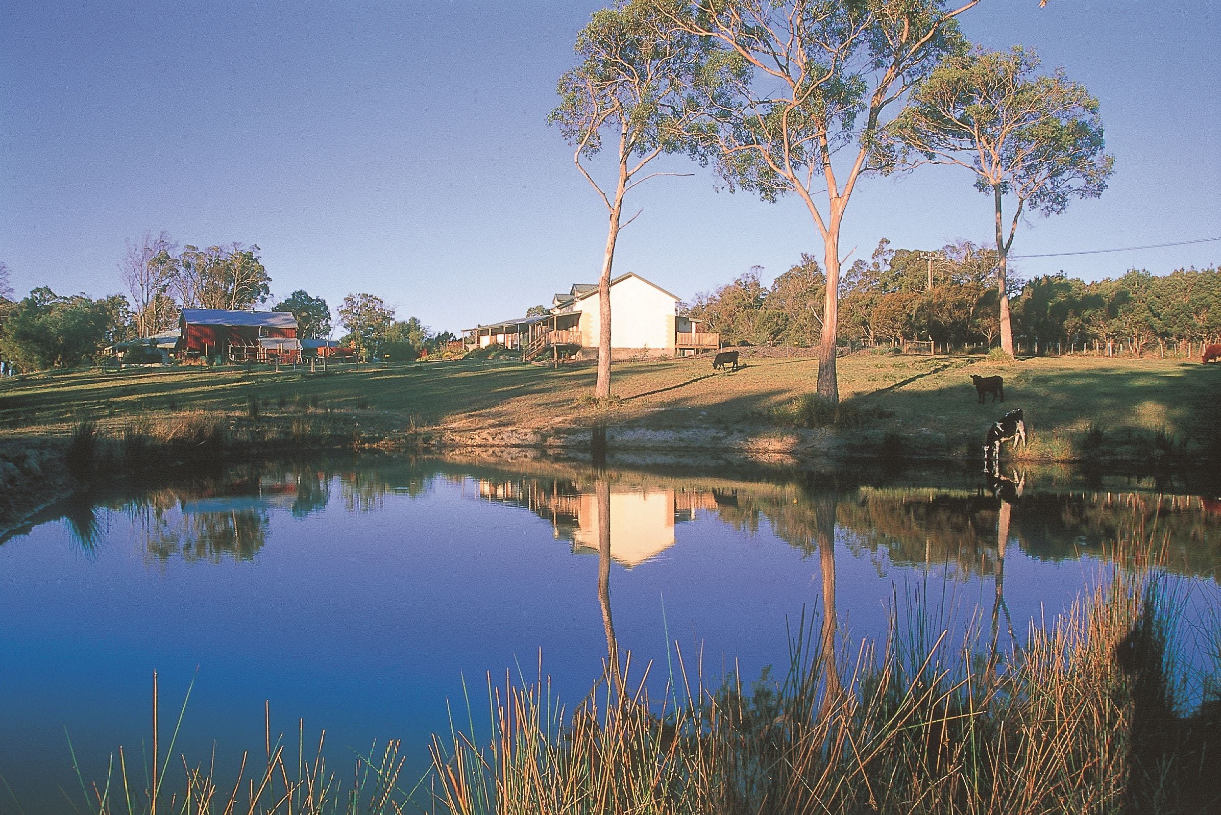 Platypus Park Country Retreat - Perisher Accommodation