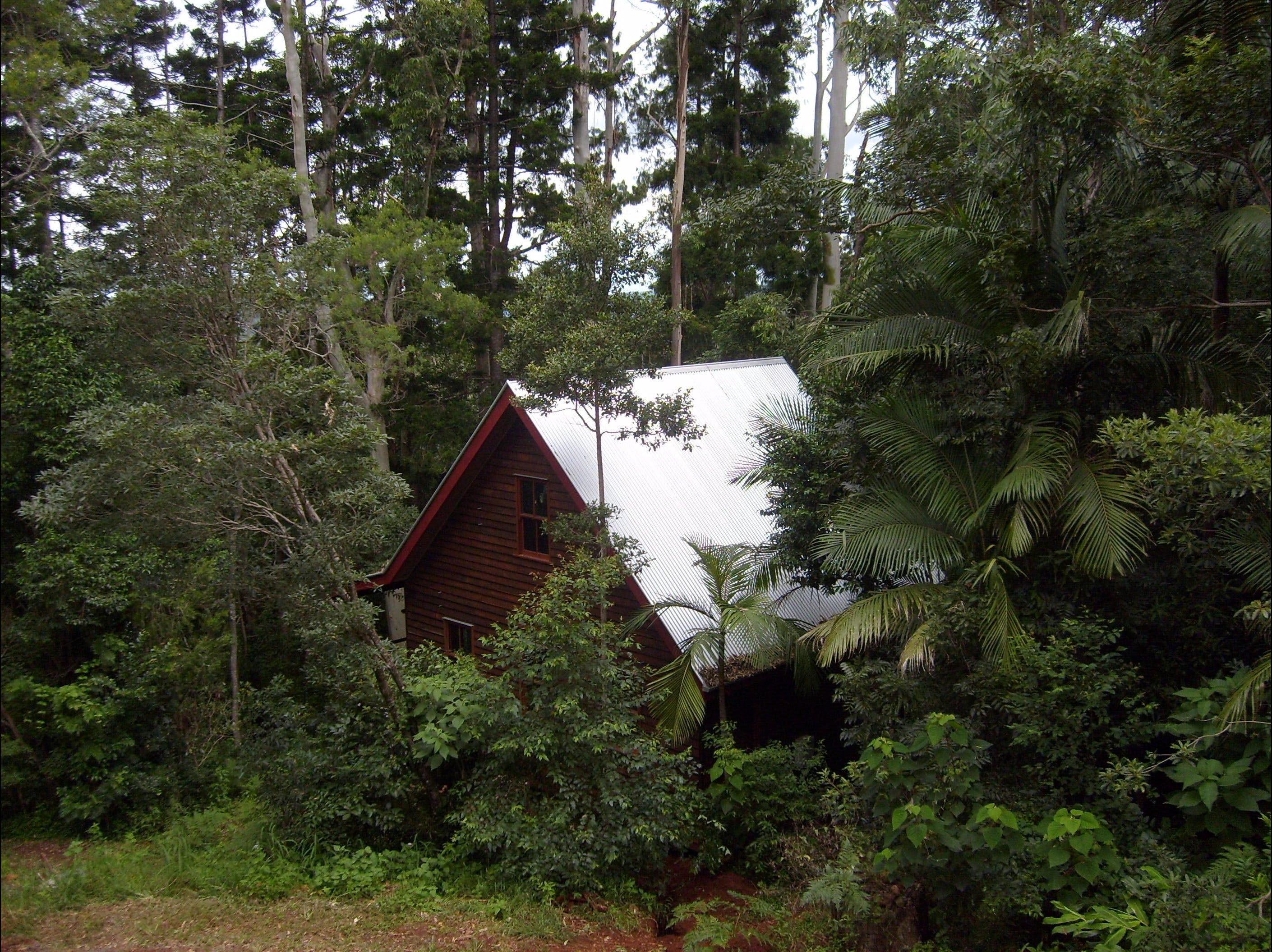 Turkeys Nest Rainforest Cottages Mt Glorious - Perisher Accommodation