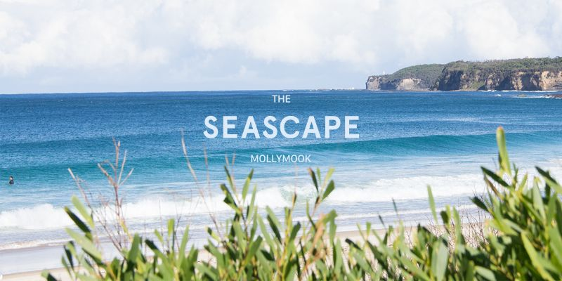 Mollymook Seascape Motel  Apartments - Perisher Accommodation