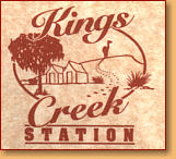 Kings Creek Station - Perisher Accommodation