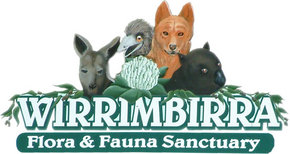 Wirrimbirra Sanctuary - Perisher Accommodation
