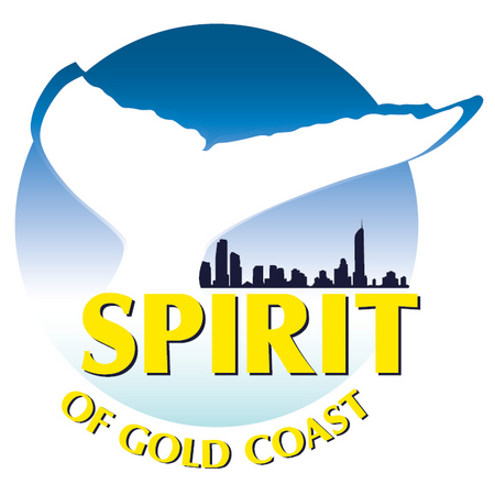 Spirit of Gold Coast Whale Watching - Perisher Accommodation