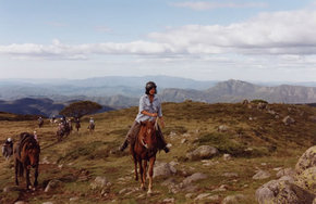 High Country Horses - Perisher Accommodation