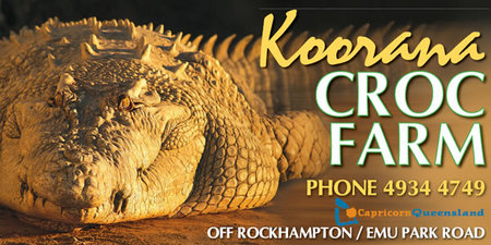 Koorana Saltwater Crocodile Farm - Perisher Accommodation
