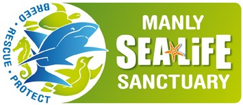 Manly SEA LIFE Sanctuary - Perisher Accommodation