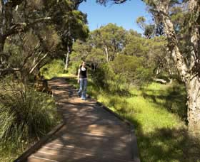 Leschenault Peninsula Conservation Park - Perisher Accommodation
