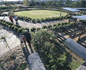 Kojonup Rose Maze - Perisher Accommodation