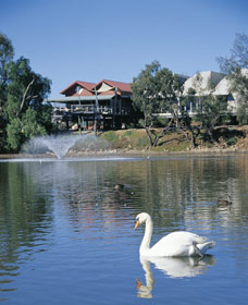 White Swans - Perisher Accommodation