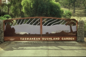 Tasmanian Bushland Garden - Perisher Accommodation