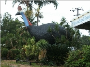 The Big Cassowary - Perisher Accommodation