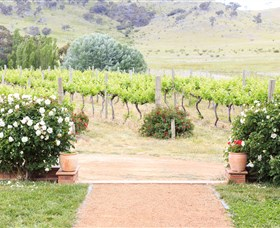 Brindabella Hills Winery - Perisher Accommodation
