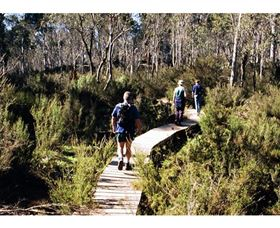 Hume and Hovell Walking Track - Henry Angel Trackhead - Perisher Accommodation