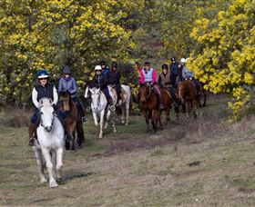 Burnelee Excursions on Horseback - Perisher Accommodation