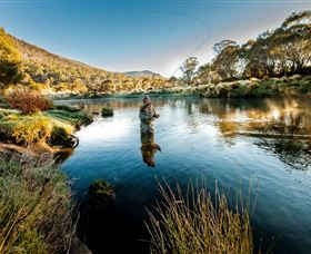 Fly Fishing Tumut - Perisher Accommodation