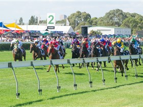 Morphettville Racecourse - Perisher Accommodation