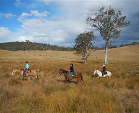 Chapman Valley Horse Riding - Perisher Accommodation