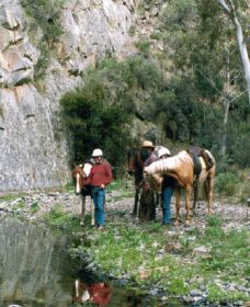 Yarramba Horse Riding - Perisher Accommodation