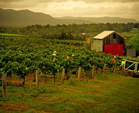Around Hermitage Wine and Food Trail Hunter Valley - Perisher Accommodation