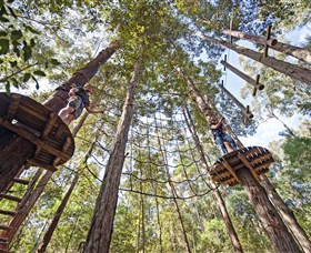 TreeTop Adventure Park Central Coast - Perisher Accommodation
