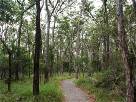 Caboolture Regional Environment Education Centre - Walking Trails - Perisher Accommodation