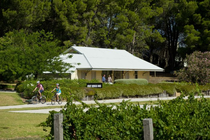 Tour de Vines - Perisher Accommodation