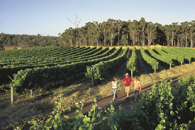 Margaret River Caves Wine and Cape Leeuwin Lighthouse Tour from Perth - Perisher Accommodation