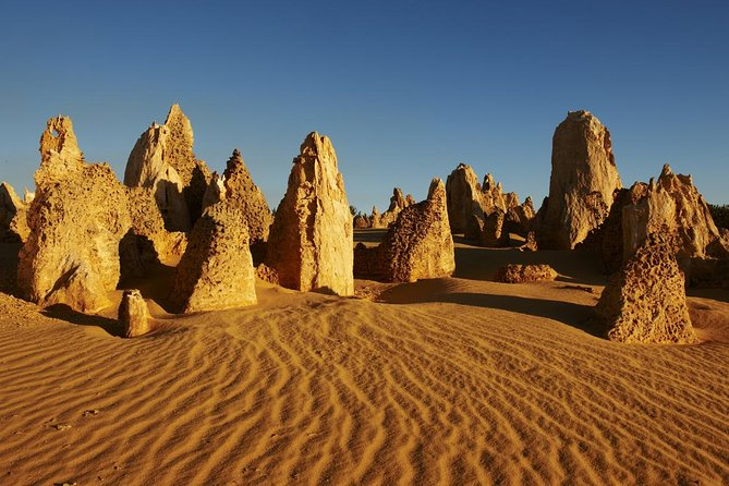 Pinnacles Day Trip from Perth Including Yanchep National Park - Perisher Accommodation